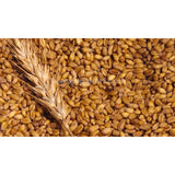 Wheat Whole Seed-1kg