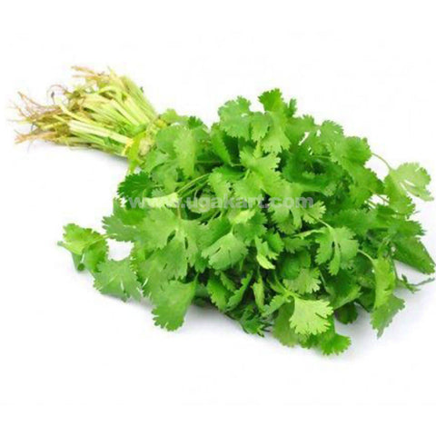 Coriander Leaf_1 Bch(Small)