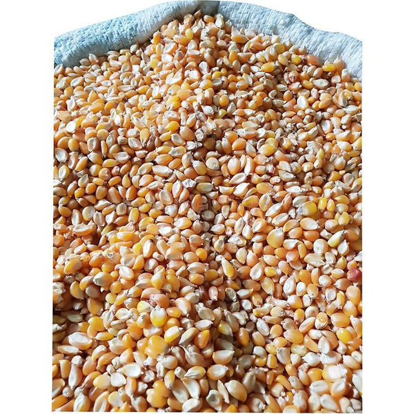 Dried Maize (For Pop Corn)-1kg (Loose Packing)