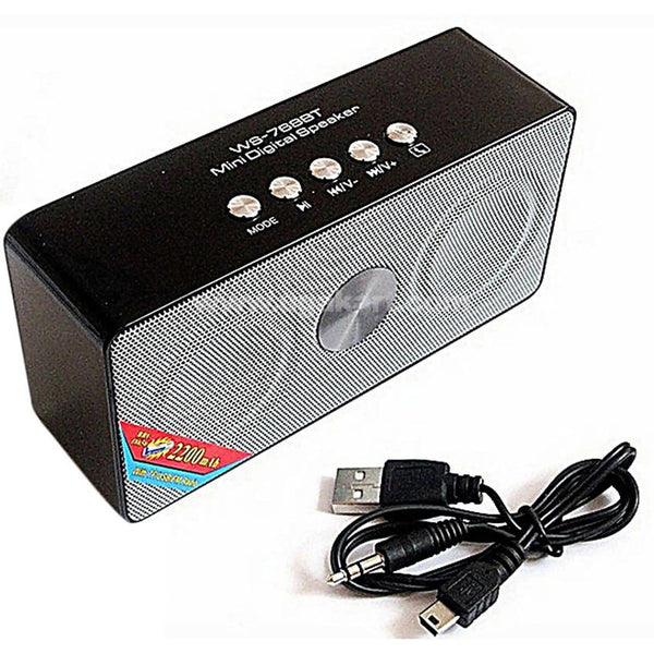 Wster Rechageable Mini Speaker With FM Radio