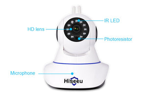 Hiseeu FH-1C Wireless Night Vision Home Security Camera