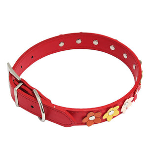 Studded Flower Pet Collar