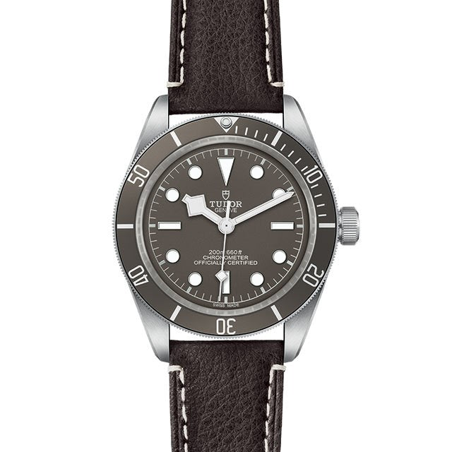 Tudor Black Bay Fifty-Eight 39mm 925 M79010SG-0001