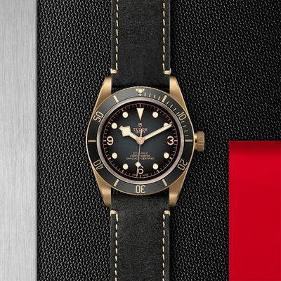 Tudor Black Bay Bronze 43mm M79250BA-0001 slate gray dial