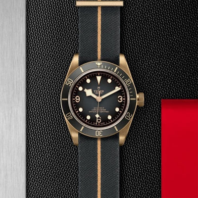 Tudor Black Bay Bronze 43mm M79250BA-0002 slate gray dial