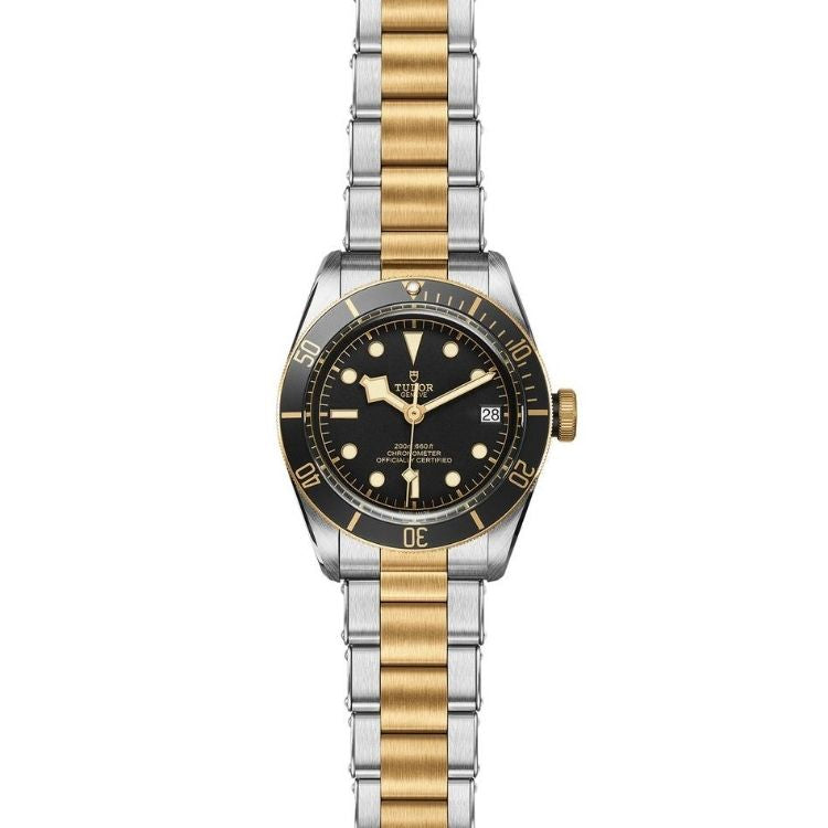 Tudor Black Bay S&G 41 M79733N-0008
