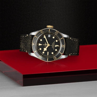 Tudor Black Bay S&G 41 M79733N-0007 on side