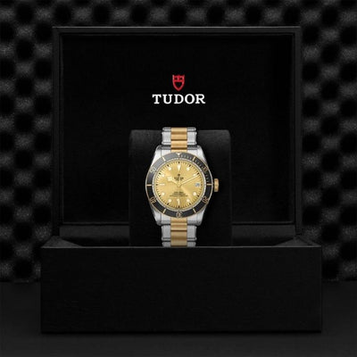 Tudor Black Bay S&G 41 M79733N-0004 presentation box