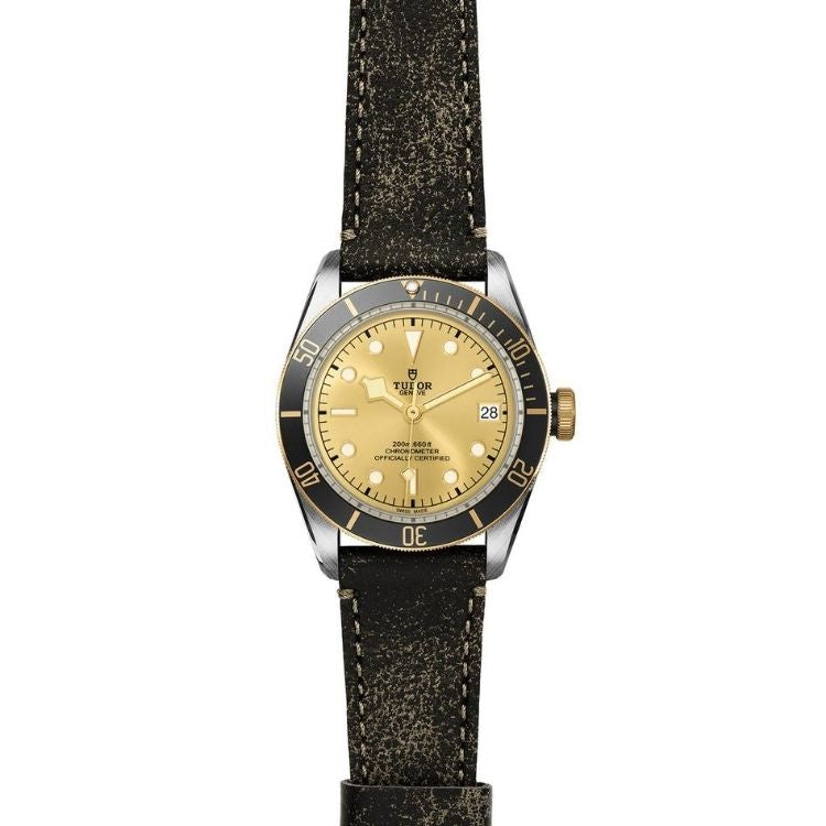 Tudor Black Bay S&G 41 M79733N-0003