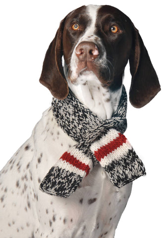 Boyfriend Dog Scarf