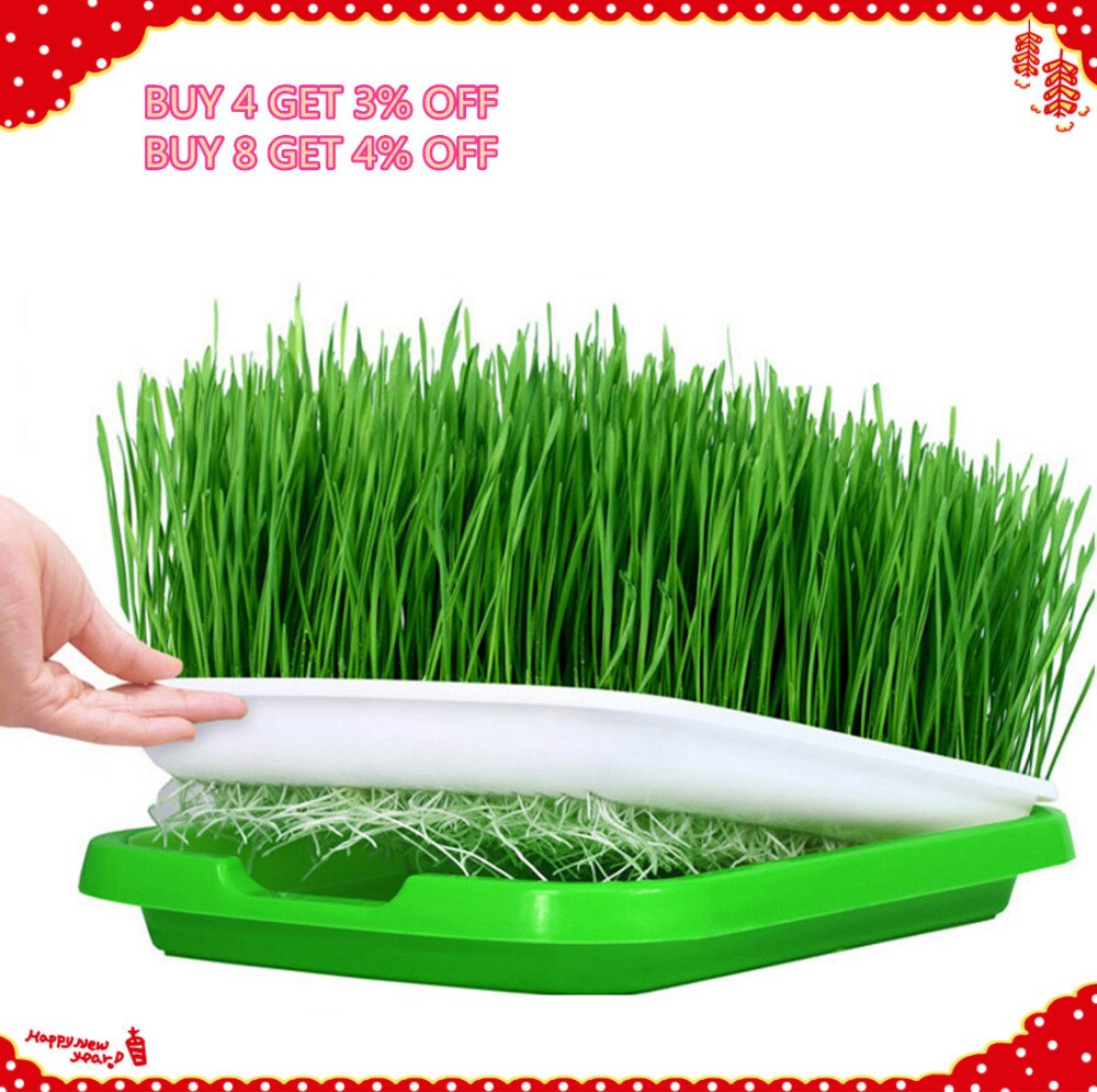 VICTMAX 5sets Double-Layer Seed Sprouter Nursery Tray Hydroponics Basket Flower Plant Germination Tray Box - Green + White