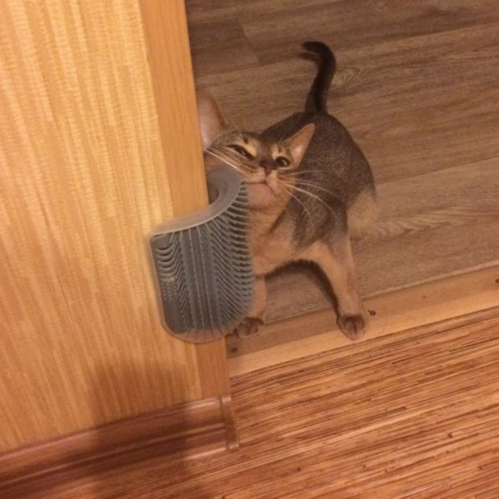 Cat Corner Hair Scratching Rubbing Brush