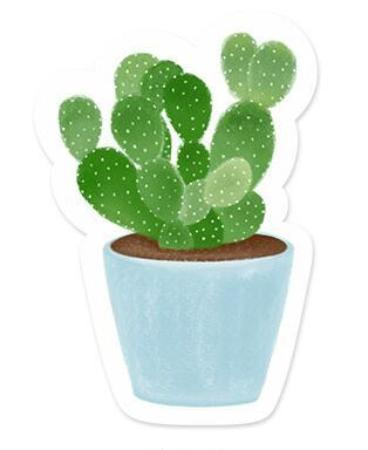 Cactus Adoration Sticky Notes