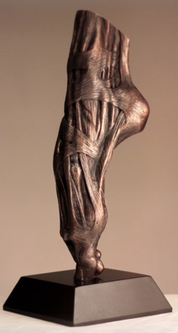 En Pointe (Vestiges Anatomical)