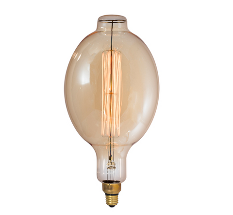 #55, Giant Light Bulb, Squirrel filament, 60W