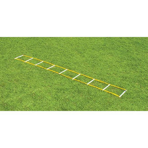 Fisher Athletic 12' Single Speed Agility Ladder AGL1612