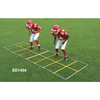 Image of Fisher Athletic Speed Demon Agility Ladder SD1454