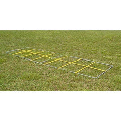 Fisher Athletic Speed Demon Agility Ladder SD1454