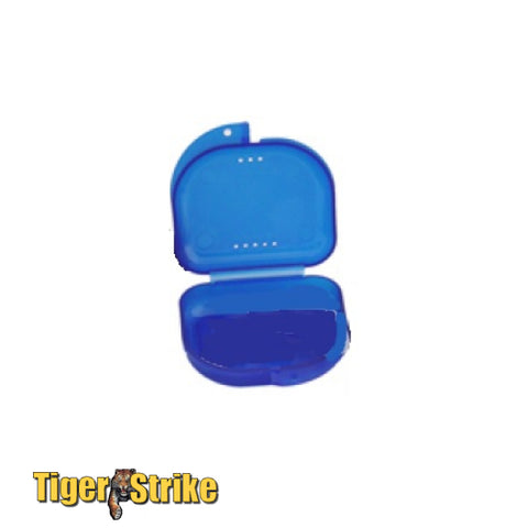 Single Mouthpiece Case