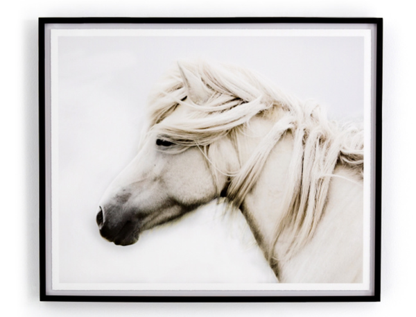 White Horse Framed