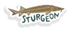 Sturgeon Sticker