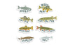 Michigan Fish Sticker Pack