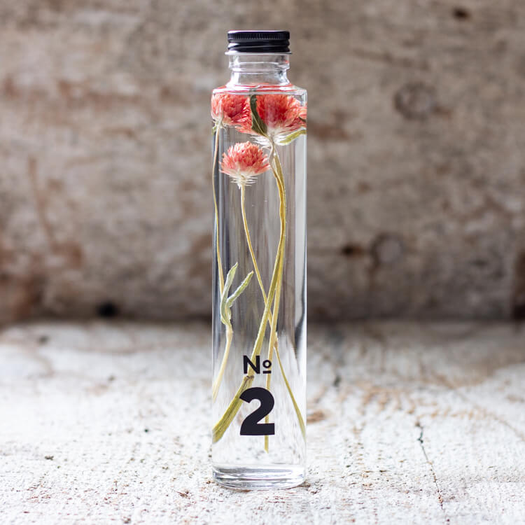 JAPANESE modern herbarium bottle in DEAR ONE collection #2 comes with pop red Globe Amaranth