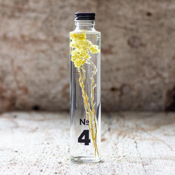 JAPANESE modern herbarium bottle in DEAR ONE collection #4 comes with Bohemian yellow Immortelle