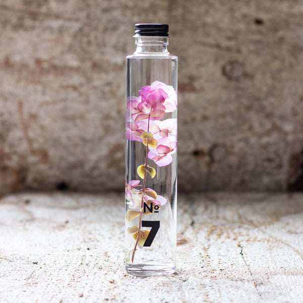 JAPANESE modern herbarium bottle DEAR ONE collection #7 comes with ruffled Origanum Kent Beauty