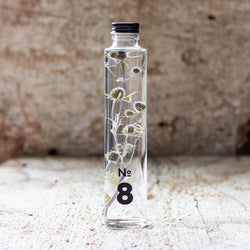 JAPANESE modern herbarium bottle DEAR ONE collection #8 comes with spikey Eryngium
