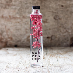 JAPANESE modern herbarium bottle DEAR ONE collection CARPE DIEM comes with Rosy and Satin Pink Pepper Berries