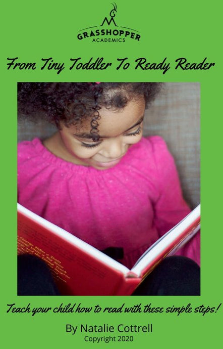 Teach Your Child How To Read e-Book, Lesson Planner and Letter Sounds Tracker