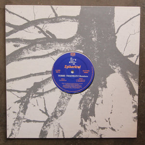 M.T. aka Bayaka ‎– Spherical (Terre Thaemlitz Remixes)