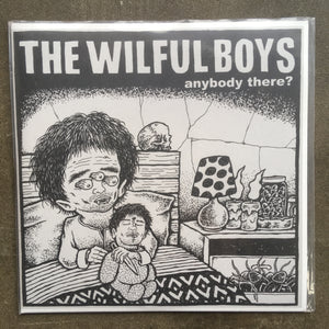 The Wilful Boys ‎– Anybody There?