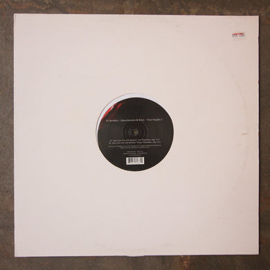 DJ Sprinkles ‎– Queerifications & Ruins Vinyl Sampler 2