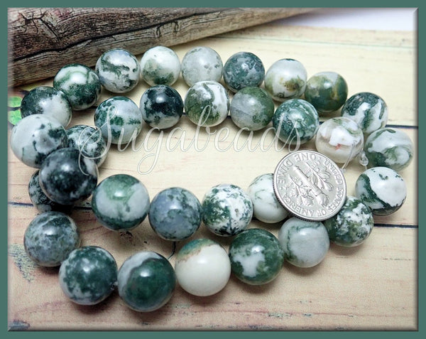 1 Strand Green Tree Agate 12mm, Green and White Agate Beads, SBGB53