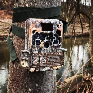 3 Pack of TrailCam SHIELDs-Sportsman's Shield