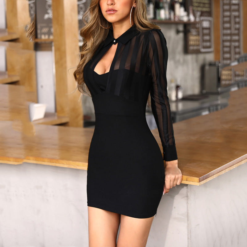 Sexy Through Mesh Bodycon Dress