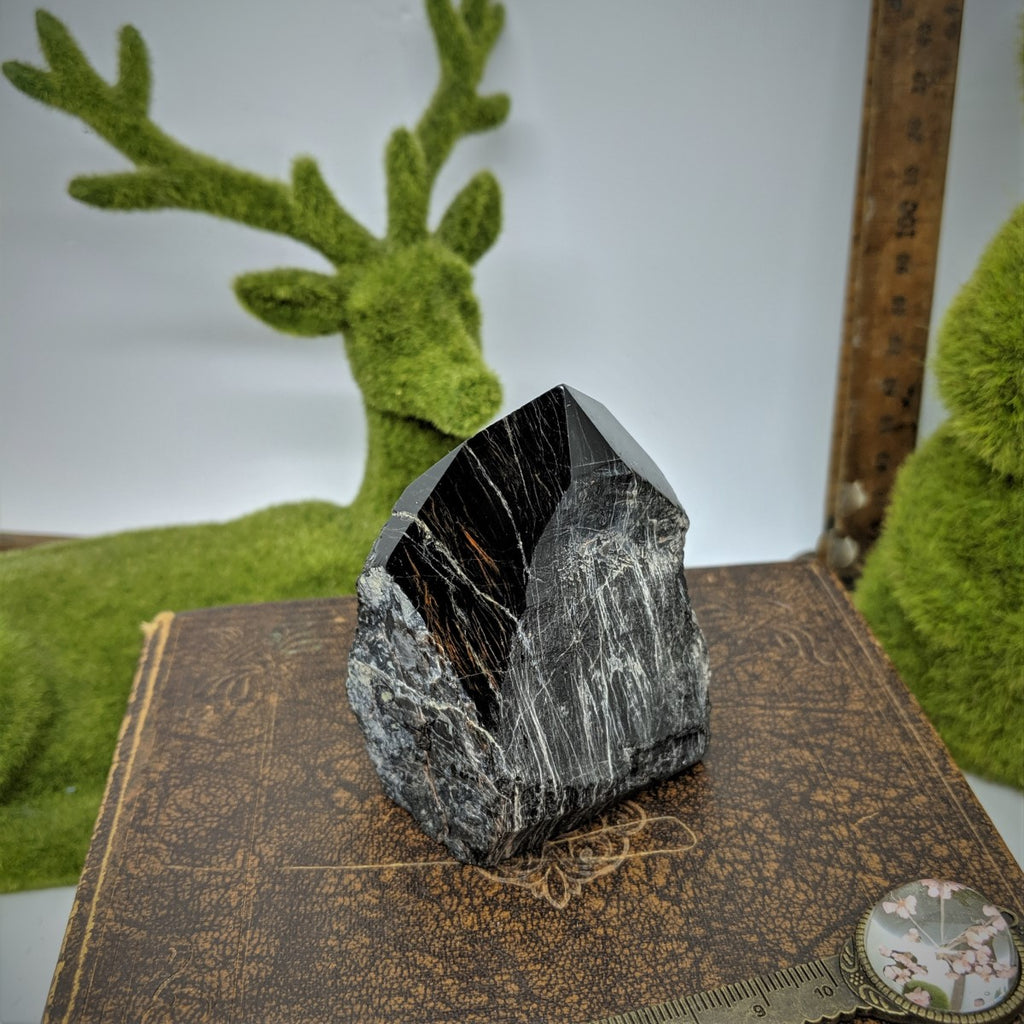 Black Tourmaline Point