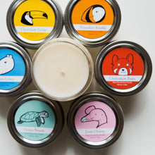 Small Wildlife Conservation Candles | 6 month Subscription ($9/mo+shipping)