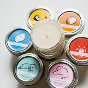Small Wildlife Conservation Candles | 3 month Subscription ($9.50/mo+Shipping)