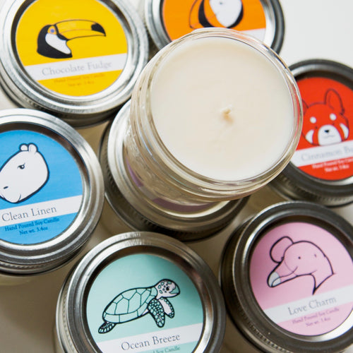 Small Wildlife Conservation Candles | 12 month Subscription ($8.50/mo+shipping)