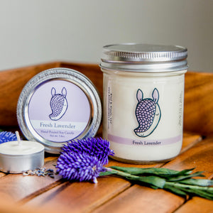 Armadillo Conservation Candle | Lavender Scent