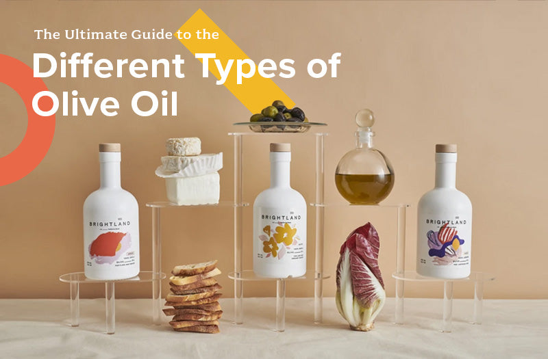 The Ultimate Guide to the Different Types of Olive Oil