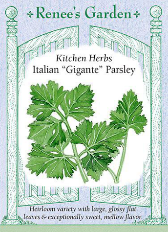 "Italian ""Gigante"" Parsley Seeds"