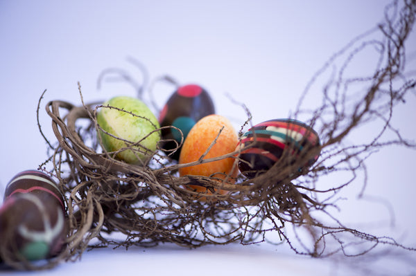colourful egg nest