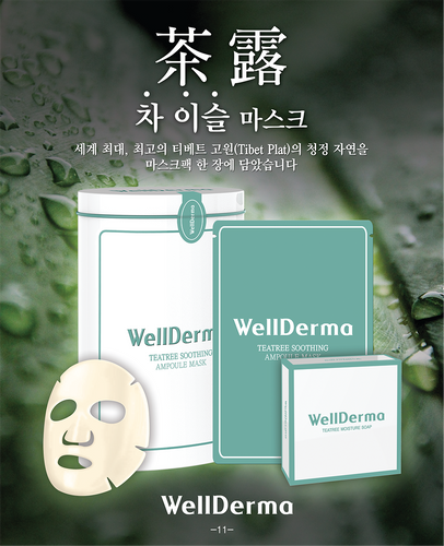 WellDerma Teatree Trouble Care Ampoule mask (10ea)