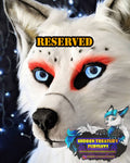 Reserved for Nissa Fullsuit commission