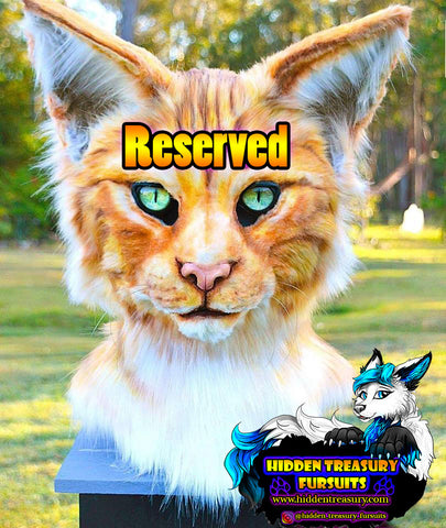Reserved Commission for Jordan- Digigrade Fullsuit