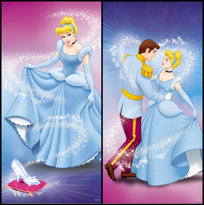 disney princess cinderella and prince. Cinderella Slipper Prince Self